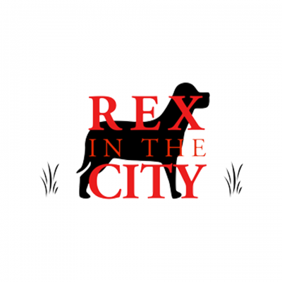 rex in the city logo
